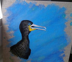 Cormoran du Cap (ghjattu1601) Tags: cormoran afriquedusud bleu acrylique photo yeuxbleus plumes