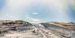 watauga tracks after the blizzard (Father Tony) Tags: wataugasd southdakota blizzard march canon50d canon alienskin watauga usa