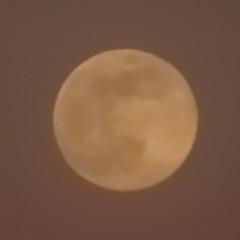 Spring Supermoon,Aberdeen_Mar 19_404 (Alan Longmuir.) Tags: grampian aberdeen misc sky moon springsupermoon