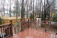 Photo of Back Yard Raining (hbickel) Tags: backyarddeck backyard rain deckrailing backdeck trees raining canont6i canon photoaday pad