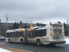 Articulated & Busy 136 (The Halifax Transit Fan!) Tags: hfxtransit727 hfxtransitroute136 articulatedbus novabuslfs