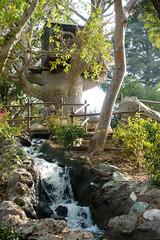 disneyland (dolanh) Tags: anaheim disneyland holidays tomsawyersisland treehouse waterfall