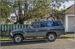Land Cruiser (NoJuan) Tags: toyota landcruiser toyotalandcruiser 4wd stationwagon longintheroof olympuspenf 1232mmpanasonic panasonic1232mm microfourthirds micro43 mirrorless parkedinseattle