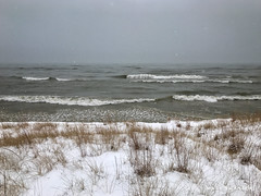 Winter Beach (mswan777) Tags: horizon lake mobile iphone iphoneography apple nature stevensville michigan outdoor storm wave water grass winter cold snow wind beach coast shore