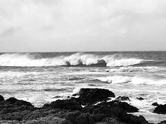 Asilomar State Beach Waves, Black & White, PG (Nancy D. Brown) Tags: asilomarstatebeach waves ocean blackwhite surf pacificgrove california