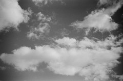 I love clouds (Matthew Paul Argall) Tags: kodakstar500af 35mmfilm ilforddelta100 100isofilm blackandwhite blackandwhitefilm cloud clouds sky