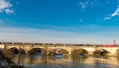 483 105 (atropo8 - fb.me/maniallospecchio) Tags: 483105 db cargo italia train treno zug merci freight verona veneto italy adige bridge ponte railways nikon d810