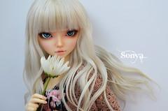 DSC_2035 (sonya_wig) Tags: fairytreewigs wig bjdwig minifeewig bjd bjdminifee minifeechloe handmadedoll bjddoll dollphoto fairyland fairylandminifee minifee chloe bjdphotographycoloringhair