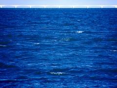 OOsterSCHelde (Omroep Zeeland) Tags: nationaal park oosterschelde zeeland blauw azul blue water brug bridge panasonic lumix