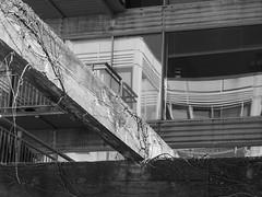 Bent Reflection (Nick Condon) Tags: architecture blackandwhite olympus45mm olympusem10 wilmette absoluteblackandwhite olympus