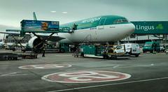 Aer Lingus A330-300 at DUB Airport - Dublin Ireland (mbell1975) Tags: airport countyfingal ireland ie aer lingus a330300 dub dublin baile átha cliath éireann irish lughawe lufthavn flughafen aeropuerto aéroport aeroport aeroporto vliegveld lufthamn havaalani aerodrom flygplats plane airliner airlines airline jet passenger mochuta