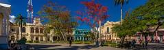 The Panoramas - South-West corner of Vidal Park centered by a Red Cardinal tree (lezumbalaberenjena) Tags: panorama panoramic cuba villas villa clara santa lezumbalaberenjena 2019 parque park vidal