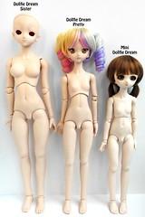 DDP Comparisons (RequiemArt.com) Tags: dollfie dream pretty sister mini volks abjd bjd doll dolls size chart comparison photo measurements ddp dds mdd parabox obitsu 45 47 50 50cm 47cm 45cm