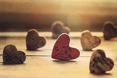 """""""Hearts"""" (mariajoseuriospastor) Tags: contraluz rojo hearts"""