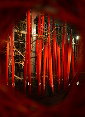 red glass (brown_theo) Tags: franklin park conservatory chihuly red columbus ohio art