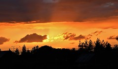 Sunset and Silhouettes (Eddie Crutchley) Tags: europe england cheshire outdoor nature beauty simplysuperb sunset silhouettes