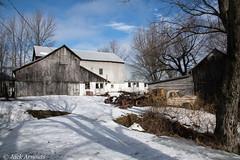 Old Dairy Farm (A. E. Newman) Tags: trees nef barn old truck pennsylvania farm pa preston wayne