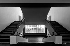 Downstairs (mimo b. rokket) Tags: abstract abstrakt architecture architektur abstraktearchitektur abstractarchitecture modern modernarchitecture geometrie geometry symmetry symmetrie staircase stairs bw blackandwhite sw schwarzweis monochrome monochrom linien lines canonefs1018mmf4556isstm wideangle weitwinkel