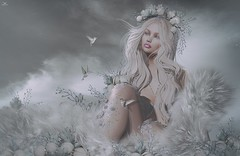 Valayra~Grey Delicate World... (Skip Staheli *11 YEARS SL PHOTOGRAPHY*) Tags: valayraresident skipstaheli secondlife sl avatar virtualworld dreamy digitalpainting fantasy flowers fur delicate grey mutedcolours blonde cute romantic soft winter hummingbirds sky
