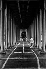 Chacun sa route (Mathieu HENON) Tags: leica leicam noctilux 50mm m240 monochrome laphotodulundi n bw bnw noirblanc blackwhite france paris pont pontdebirhakeim 16ième arrondissement ligne blanche joggueuse piste cyclable