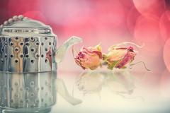 Rosebud tea (Ro Cafe) Tags: macro nikkor105mmf28 sonya7iii bokeh rosebud tea teainfuser reflections pastelcolours brew stilllife