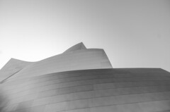 (Federico Pensa) Tags: disney music hall los angeles california usa america building west coast black white concert architecture