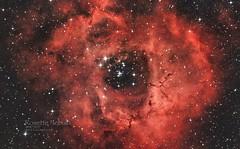 Rosette Nebula 2019 - 3480x2160 (extolstudios) Tags: ngc2237 ngc2244 rosettenebula ngc2239 thestar12mon