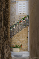 in the street corner (ck0375s) Tags: city street cityscape landscape flower sceneryh croatia nikon split corner amateur architecture building light