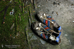 Worn Out (tfavretto) Tags: abandoned adidas sault ssm soo algoma broken glass carpet feet footwear kicks moldy moss runners runningshoes wet worn floor