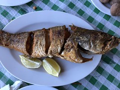 our lunch today (Hayashina) Tags: spain tenerife roquedelasbodegas lunch fish