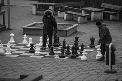 Chess Players (Rudi Pauwels) Tags: 2019onephotoeachday 52in2019challenge chess playingchess streetshot streetphotography neighbours game playthegame cold bw blackandwhite svartvit