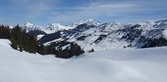 DSCF3725 (Laurent Lebois ©) Tags: laurentlebois france nature montagne mountain montana alpes alps alpen paysage landscape пейзаж paisaje savoie beaufortain pierramenta arèchesbeaufort
