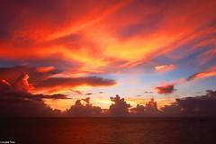 Don't forget (gusdiaz) Tags: ft lauderdale miami amanecer sunrise beach ocean clouds nubes oceano cielo colorful colorido amazing fuji fujifilm xt2 wide lens