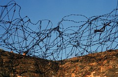 a jumble of barbed wires (rob kraay) Tags: cave rockwall robkraay barbedwire drygrass steelparts