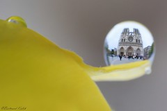 Notre Dame, Parisian water drop (bertrand kulik) Tags: drop water goutte reflet reflection notredame architecture abstract abstrait paris france canonmpe macro