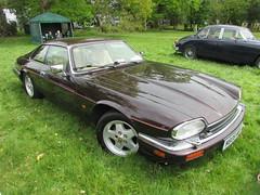 Jaguar XJS V12 6.0 M808WBF (Andrew 2.8i) Tags: classic classics cars car show singleton park swansea 2015 british coupe sports sportscar gt 60 6000 v12 xj xjs jaguar
