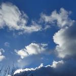 P2250704 thumbnail