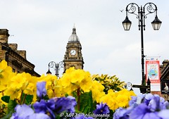 Morley town hall at Spring time. (Please follow my work.) Tags: art arty artistic artwork brilliantphoto brilliant candid colour d7100 england excellentphoto excellent flickrcom flickr flora flower flowers google googleimages gb greatphoto greatphotographers image interesting leeds ls27 mamfphotography mamf morley morleyleeds nikon nikond7100 northernengland onthestreet photography photo photograph photographer quality qualityphotograph queenstreetmorley queenstreet road sex street spring springtime town townhall morleytownhall uk unitedkingdom upnorth westyorkshire yorkshire
