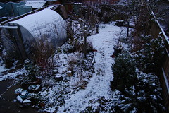 Looking Down on the Back Garden - January 2019 (basswulf) Tags: polytunnel backgarden d40 1855mmf3556g lenstagged unmodified 32 image:ratio=32 permissions:licence=c 20190123 201901 3008x2000 lookingdownonthegarden garden snow winter normcres oxford england uk