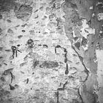 Hose Clamp Wall thumbnail