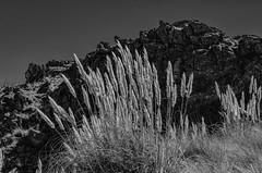 Otoño en Altas Cumbres (Angel Perona) Tags: argentina córdoba otoño paisaje paises traslasierras