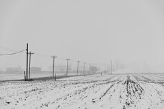 Winter in the Country (ramseybuckeye) Tags: winter snow fog gray overcast road telephone poles electric lines farm fields rural pentax art life black white monochrome county ohio allen