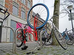 The World Upside Down (Hindrik S) Tags: swap fiets fyts rad fahrrad bike cycle bicycle tyre bân band bicyclestand fahrradständer pavement gehsteig streetphoto strjitfotografy strasenfotografie straatfotografie street strase strjitte straat nijstêd nieuwestad liwwadden ljouwert leeuwarden wheel tsjil fjil räder frame 2019 sal1650 sonyilca77m2 slta77ii α77 minoltaamount amount sonyphotographing sony sonyalpha sony1650mmf28dtssm