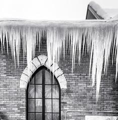 Freezing ...    ; (c)rebfoto (rebfoto...) Tags: icicles ice rebfoto winter winterscape monochrome architecture
