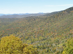 DSC07676 (TerrMys) Tags: northcarolina nc southern appalachians fall autumn october