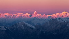 Alpenglow (Andrea Knobel) Tags: landscape mountain peaks mountainscape switzerland schweiz suisse svizzera tessin ticino hike hiking morning sunrise glow finsteraarhorn spitz pink ethereal outdoors adventure travel