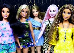Five in the second configuration (Nickolas Hananniah) Tags: barbie doll barbiedoll barbiefashionistas curvy curvybarbie curvydoll latina teresa goddess model hair makeup toy collectabledoll playline mattel