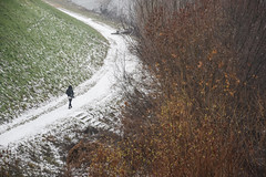 Sentiero d'inverno - Winter path. (sinetempore) Tags: sentierodinverno winterpath street neve snow inverno winter pavia alberi trees erba grass donna woman