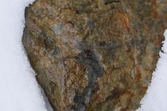 DSC_9005 (jgdav) Tags: ancient pigment quartz rock ochre blue image pictograph america