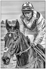 Man on a horse (Andy J Newman) Tags: blackandwhite man portrait race nikon monochrome rider nature jockey didmarton closeup animals pointtopoint horse d500 horses badminton england unitedkingdom gb